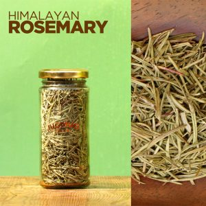 Authentic-Fresh-Himalayan-Rosemary-Jugmug-Thela