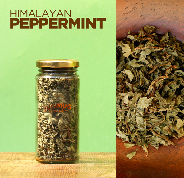 Fresh-Himalayan-Peppermint-from-Jugumug-Thela
