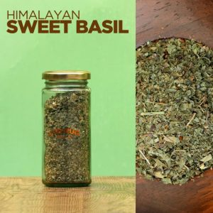 Himalayan-Sweet-Basil-Buy-in-India-Jugmug-Thela