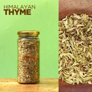 Himalayan-Thyme-Full-Leaf-Gourmet-Culinary-Herbs